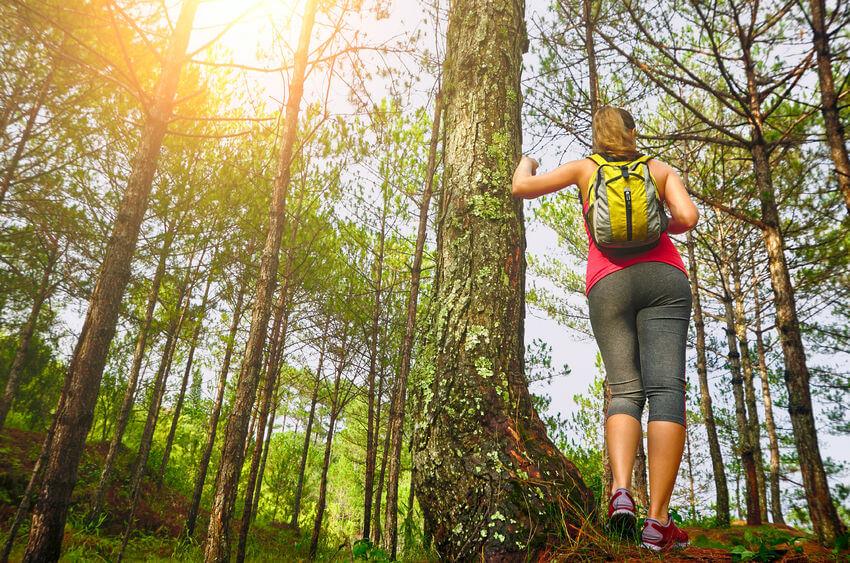 Ikut Menjaga Alam dan Budaya lewat Ekowisata