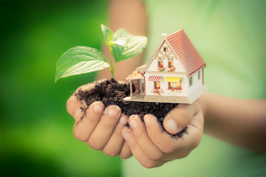 Be an Eco-friendly Family